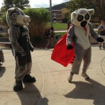 Baxter and the Hinman Mascot, Tiki dancing on Green Day Friday