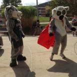 Baxter and the Hinman Mascot, Tiki dancing on Green Day Friday